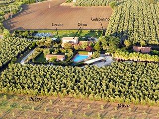 Poderecampialmare. House 'Gelsomino' 4 PAX, terrazzo, POOL, PRIV GARDEN, CARPARK