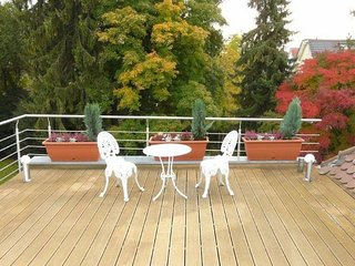 Spacious studio in Munich with Internet, Washing machine, Terrace