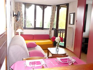 Cozy apartment in the center of Chamonix with Lift, Parking, Internet, Balcony