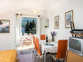 Cozy apartment in the center of Zaton with Parking, Internet, Balcony