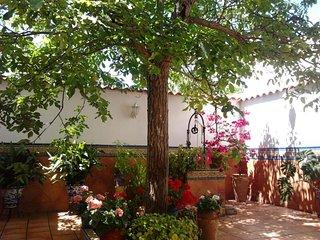Spacious house in Peñarroya-Pueblonuevo with Parking, Washing machine, Air condi