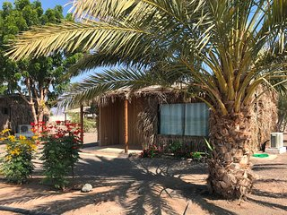 Luxury farmstay cabin; infinity + plunge pool; close Sinaw, Ibra, Wahiba Sands
