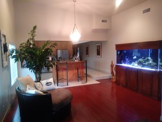 centrally located penthouse 420 friendly