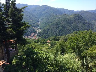 Spacious apartment in Bagni di Lucca with Internet, Washing machine, Terrace