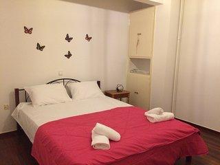 Comfortable modern apartment at Filopappou