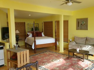 Garden Cottage - Peace, views, light and privacy. Romantic Wimberley getaway