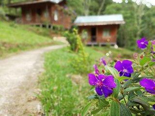 Mountain Cabin Manantial de Paz 1-Rodeada de Naturaleza