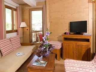 Appartement cosy et charmant, au pied des pistes !