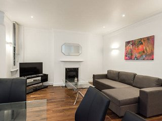 Fabulous Apartment in Central London (FS2)