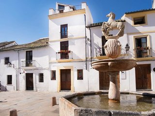 Spacious apartment in the center of Cordoba with Internet, Washing machine, Air