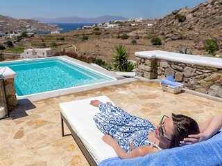 9 Muses Villa Clio, 3 BR with private plunge pool!