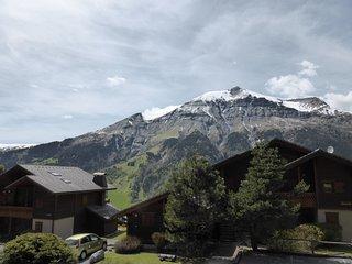 Chalet spacieux et cozy 6p, avec vue panoramique sur le Mont Joly !