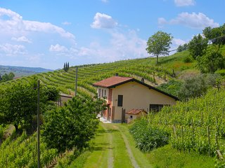 FARMHOUSE IN THE MIDDLE OF THE VINEYARDS IN NIZZA MONFERRATO
