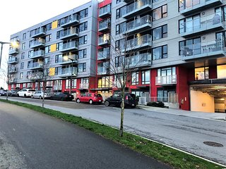 *WINTER MONTHLY PRICE* Central and cozy 1 bedroom apt in Mount Pleasant