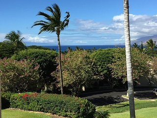 Palms at Wailea #1604, 1Bd/2Ba, Spacious, Ocean View, Next to Keawakapu Beach