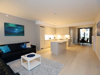 Sonderland Apartments - Dronning Eufemias gate 53 (Sleeps 9 - 3 BR / 2 BA)