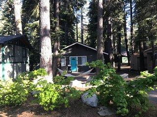 Hidden Willow at Tahoe Park