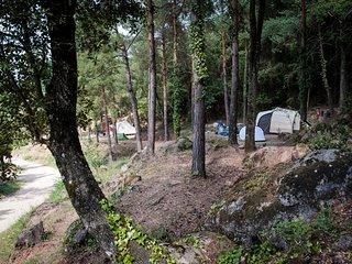 parcelaspara acampar, muy separadas, en plena naturaleza, 6 pax.