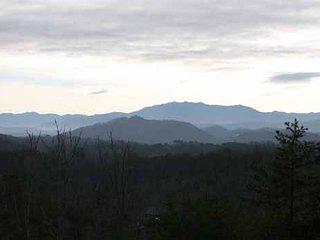 Blue Mountain Views