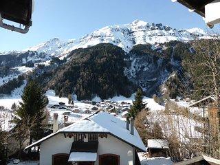 Studio cosy et sympa avec vue sur les montagnes ! Au coeur du village