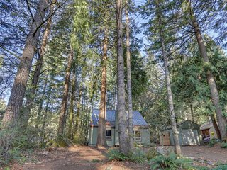 Cozy, remodeled home - nestled among the evergreens and close to the slopes!
