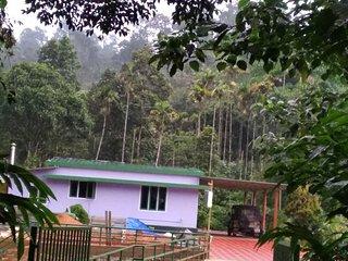 Plappalliyil Cottage Munnar 3