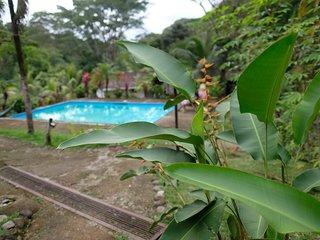 Chilantro Private and Dorm Rooms, Ojochal, Costa Rica
