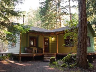 Dog-friendly, cozy 1930's cabin w/ private in-ground hot tub, wood stove