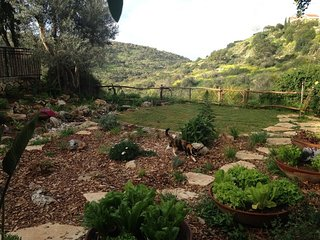 Holiday Vacation Rental by the Nature Reserve (Best  Kosher Short/Long Term)