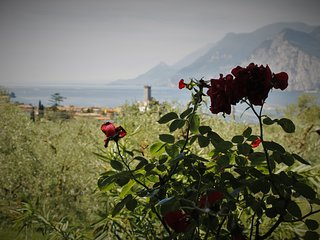 New elegant italian style 1x2 room apartment with evocative view of Lake Garda