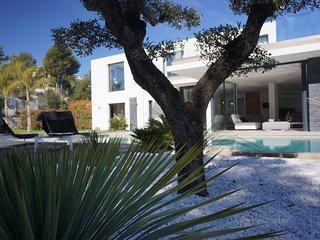 Dream holiday villa.