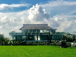 Canggu Modern Luxury Rice paddy view 5 bedrooms