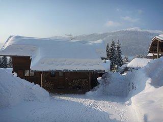 Chalet Sauterelles - Foosteps to Ski Slopes and Les Gets lake, 4 Bedrooms, Amazi