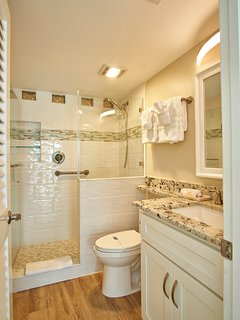 Master Bath with Walk-in Shower and unique glass block at ceiling.
