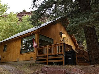 Cozy Secluded Cabin - Near Ridgway - Free Night Offer