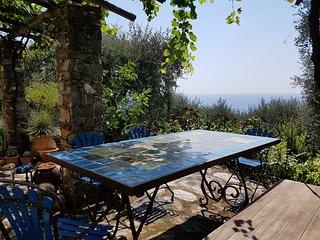 Casa di campagna super vista mare, immersa negli olivi