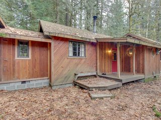 Charming dog-friendly cabin w/ wood stove, woodland views close to Mt. Hood
