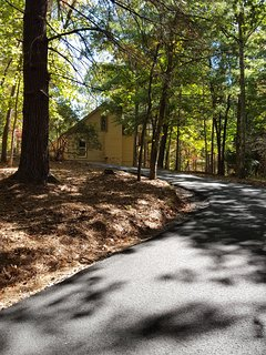 Paved drive with lots of parking, turn around and access to back pavilion and firepit  area.