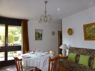 Appartement confortable + spacieux | A 300m du telecabine