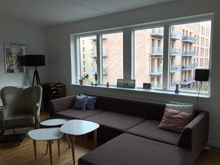 Family friendly Copenhagen apartment near the metro