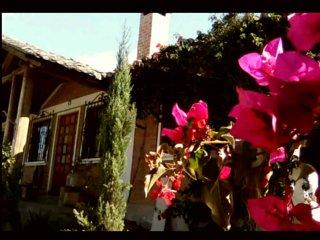 Rosita's Cottage