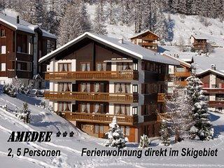 AMEDEE 3 ***  im Skigebiet *Stafelwald*  5 Personen