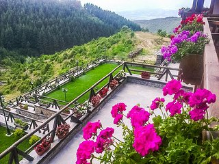 Mountain Lodge Amidst Amazing Nature and Views