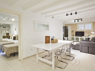 Spacious and centrally located apartment on Las Ramblas