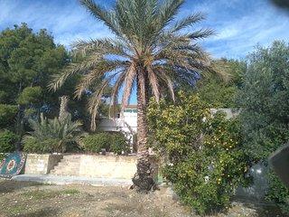 Casa en  Albatera, Alicante