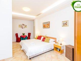 Apartments Subrenum - Basic  Studio Apartment (S4)