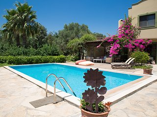 Important Group | BD467 High Privacy 3 Bedroom Villa in Ortakent