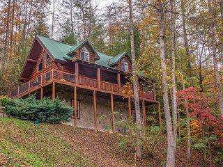 Spacious & dog-friendly cabin w/Jacuzzi, private hot tub, seasonal pool access!