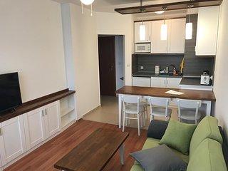 Luxury SPA apartment near ski lift