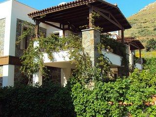 Important Group   BD415 3 Bedroom Pool Villa in Kadikale